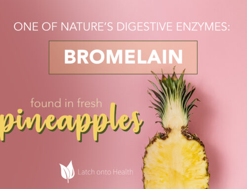 The Big B in the Golden P – How Fresh Pineapple Can Help Your Gut